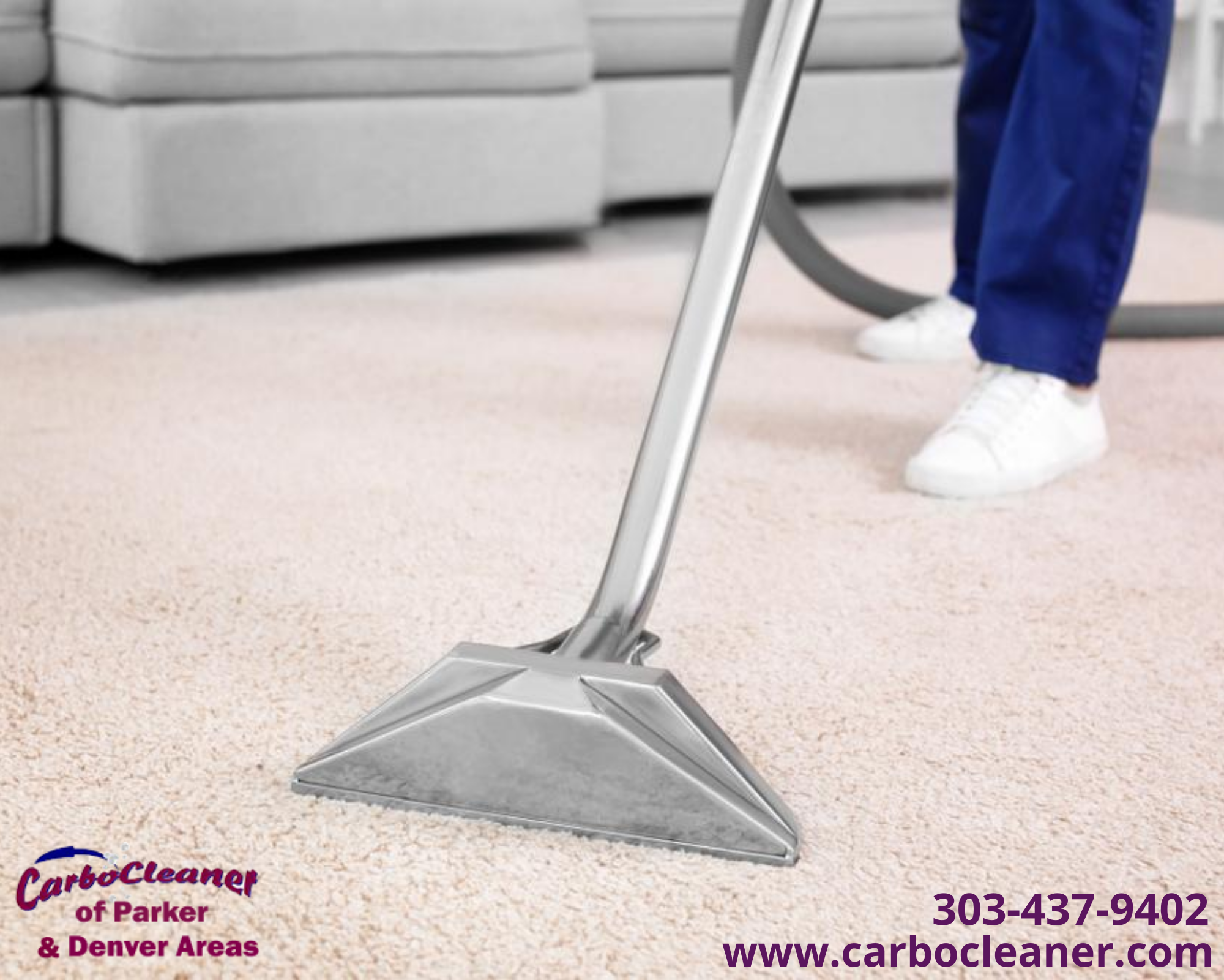 Chemical Free Carpet Cleaning Services In 2020 How To Clean Carpet Dry Carpet Cleaning Carpet Cleaning Service
