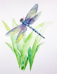 Image result for dragonfly watercolor paintings