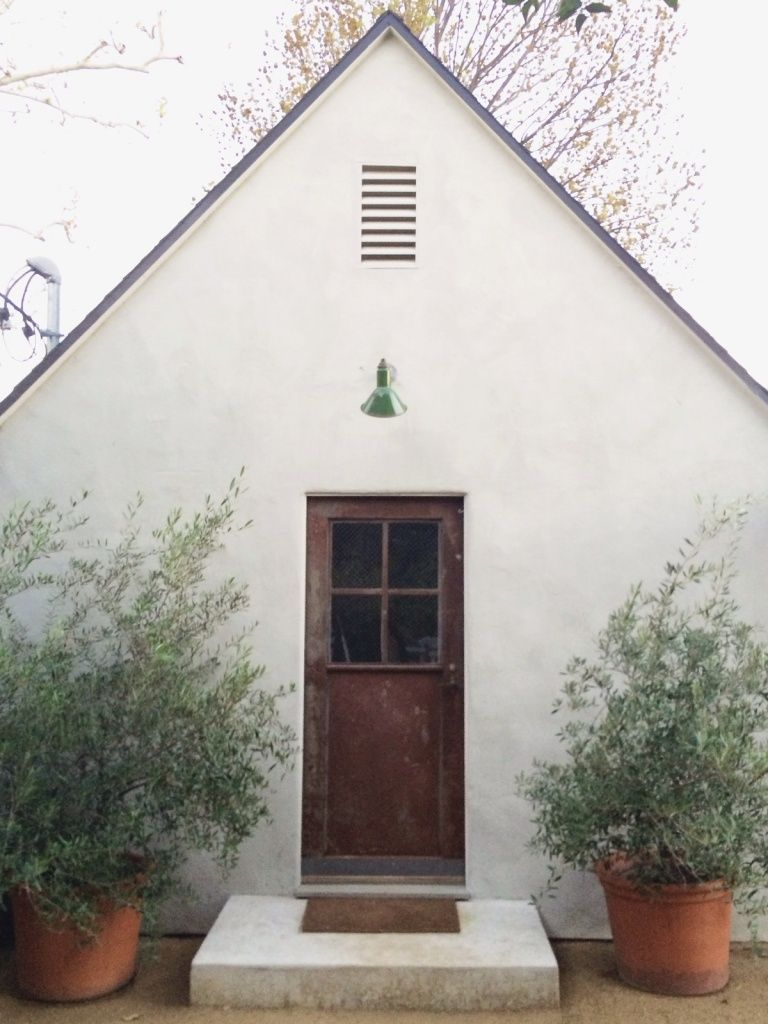 Large potted plants framing the back door - lemon trees if there is ...