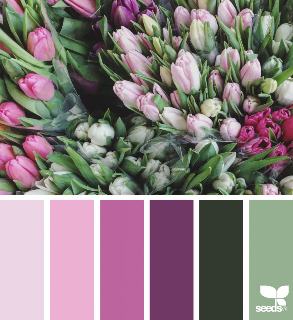 Spring Hues (design seeds) Rustic color palettes, Design