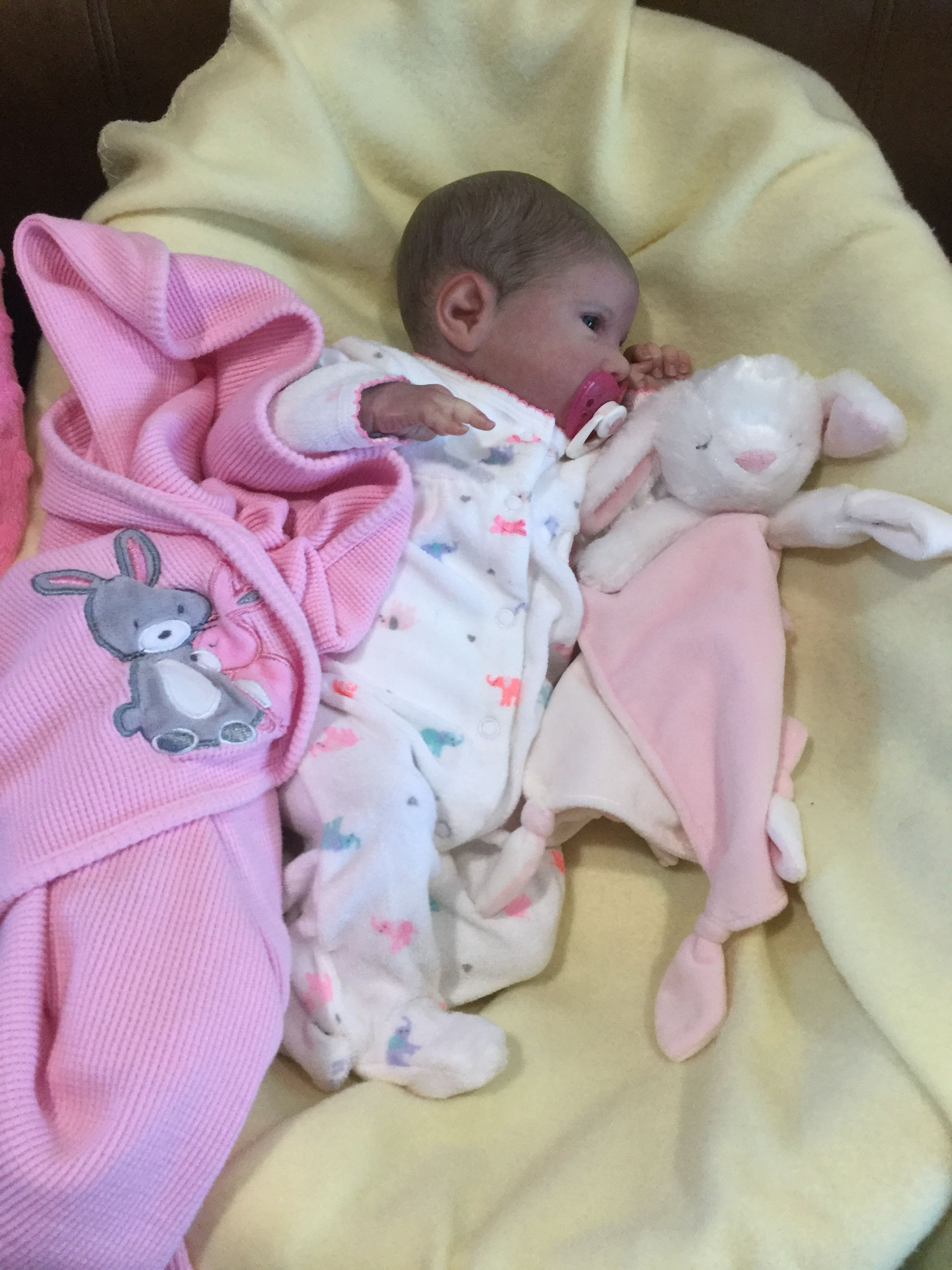 Chelsea Marie Reborn Baby Dolls For Toddlers Reborn Baby Dolls Realistic Baby Dolls