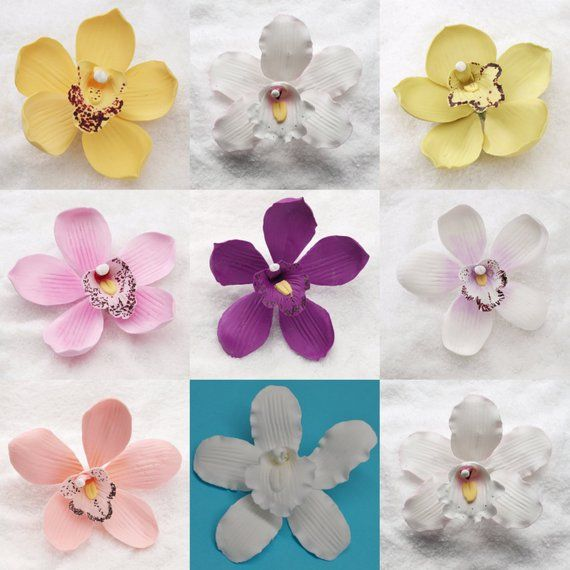 Cymbidium Orchids Various Colors Available Fondant Edible Cake Toppers Sugar Gumpaste Fondant Blue Orchid Flower Blossom Flower Flower Bud