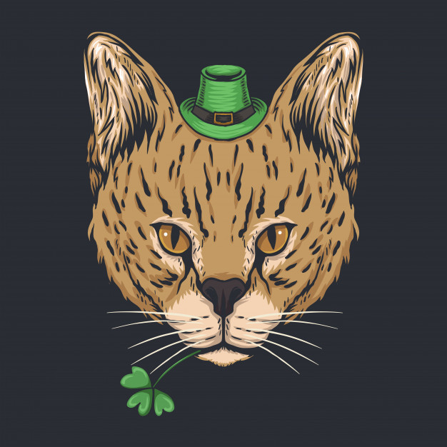 Serval Cat For St. Patrick's Day in 2020 Serval cats