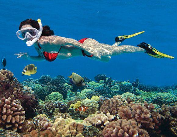 Snorkeling Adventurous Water Sport