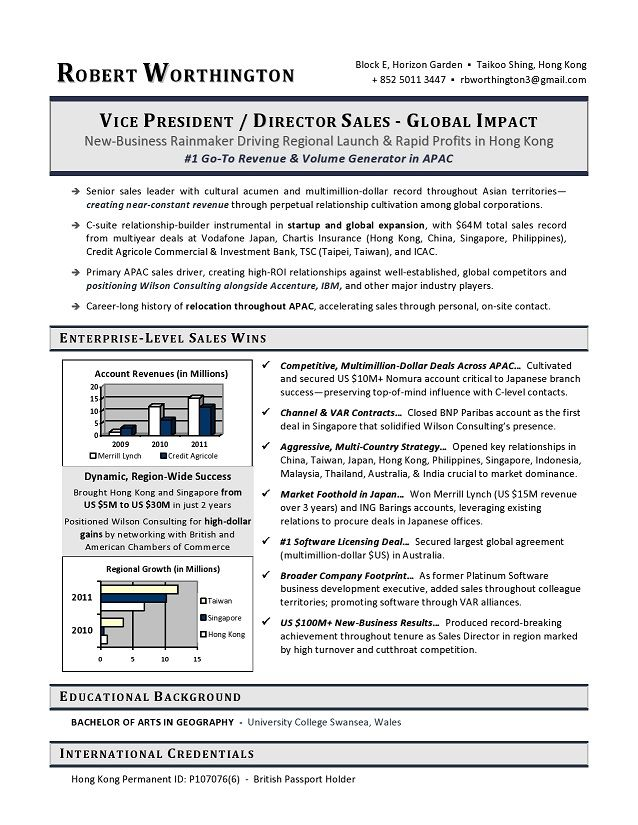 VP Sales Sample Resume - Executive resume writer VP, Director, CTO