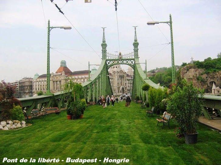 Pont de la libérté - Budapest - Hongrie