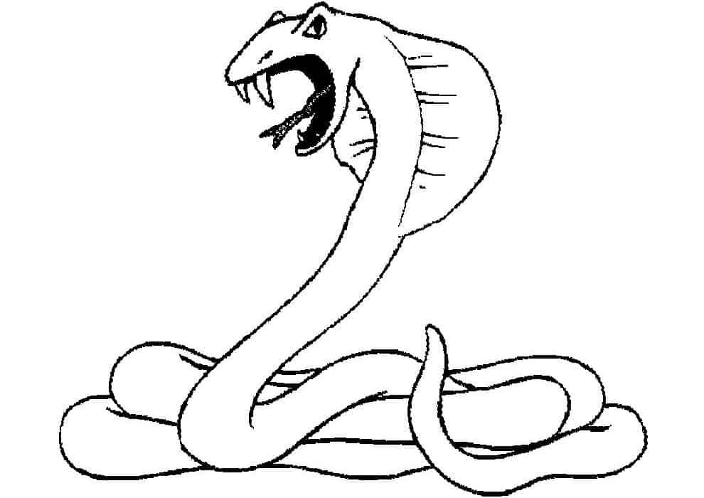 Scary Snake Coloring Pages In 2020 Snake Coloring Pages Animal Coloring Pages Desert Animals Coloring