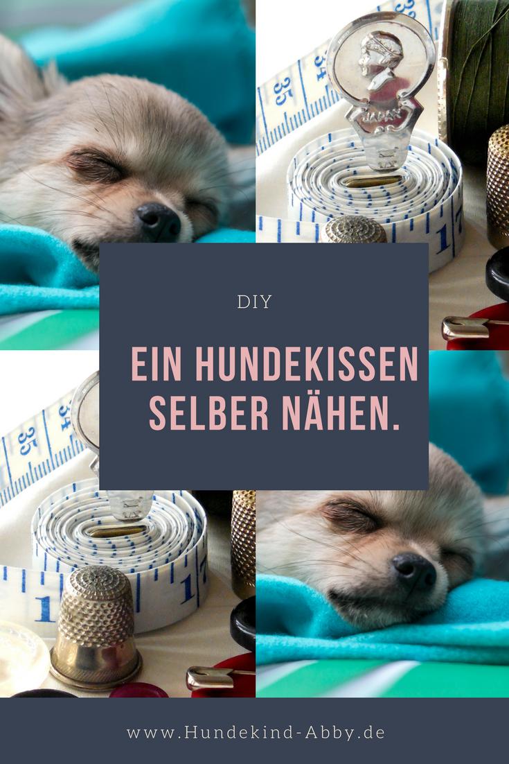 Geburtstagswoche Diy Hundekissen Hunde Kissen Hund Diy Hunde