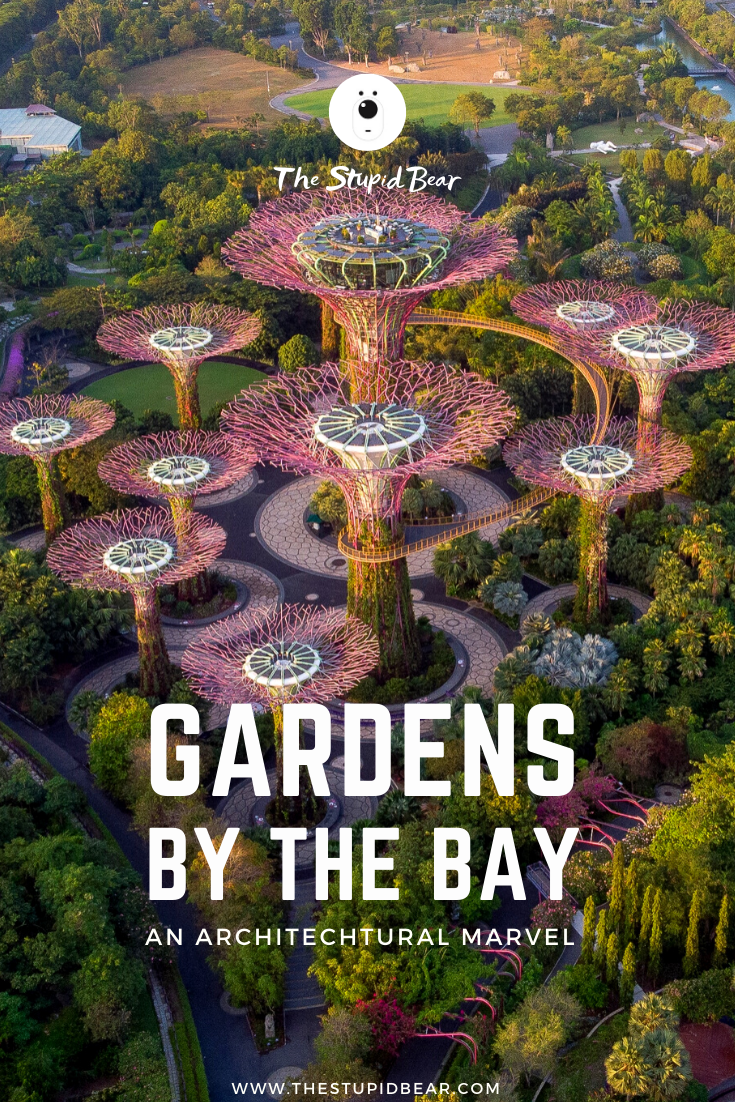 ab45c9902007b7a2924a6654c7099017 - How To Visit Gardens By The Bay