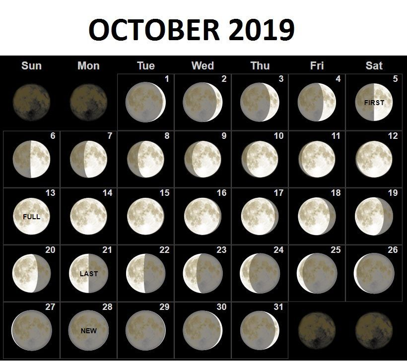 Moon Phases For October 2019 Calendar Template Moon Phase