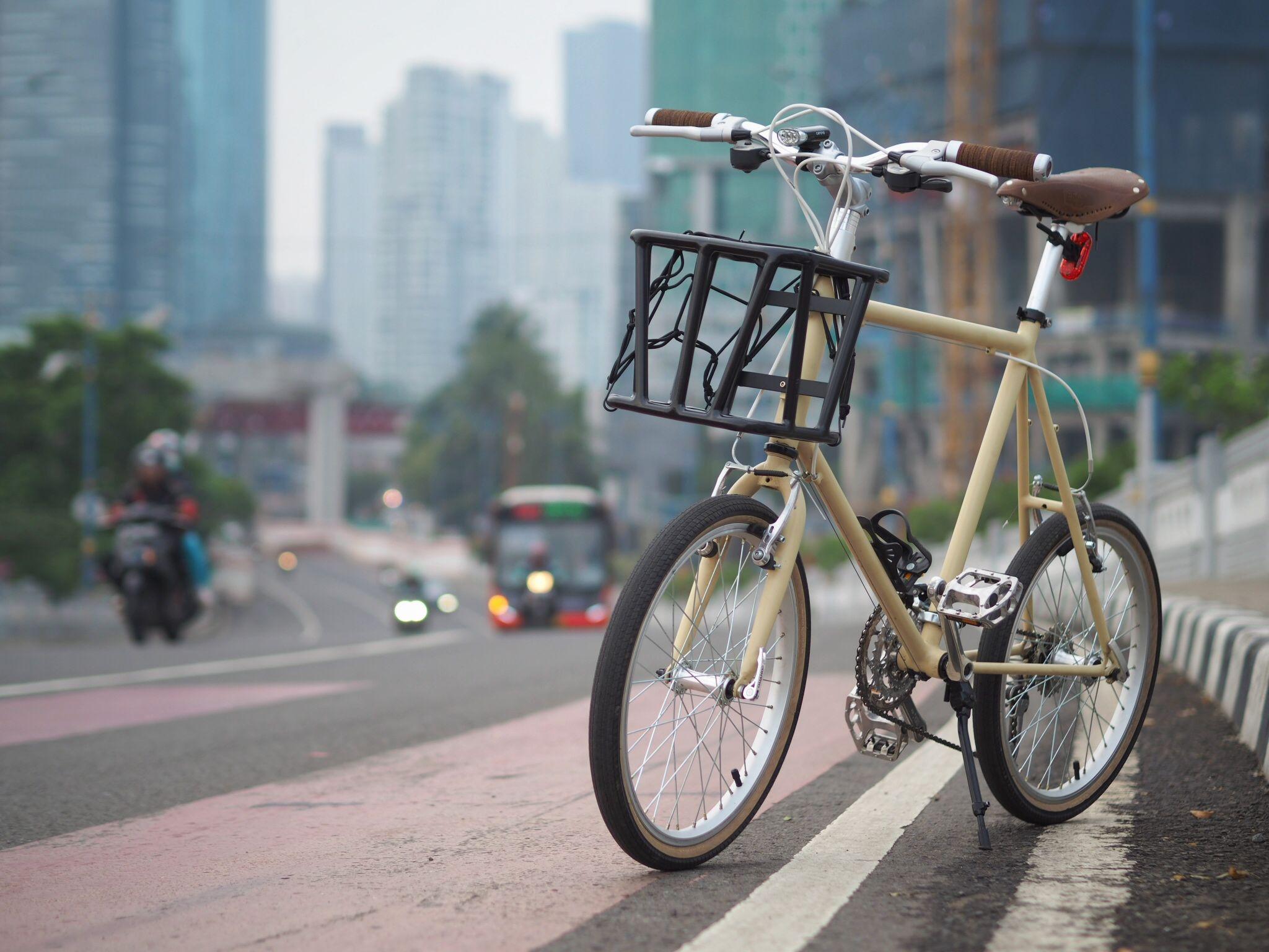 Ibu Mini My First Custom Mini Velo Sepeda