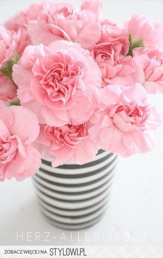 Pin By Madeline King On Gamma Phi Beta Pretty Flowers Flower Arrangements Pink Flowers