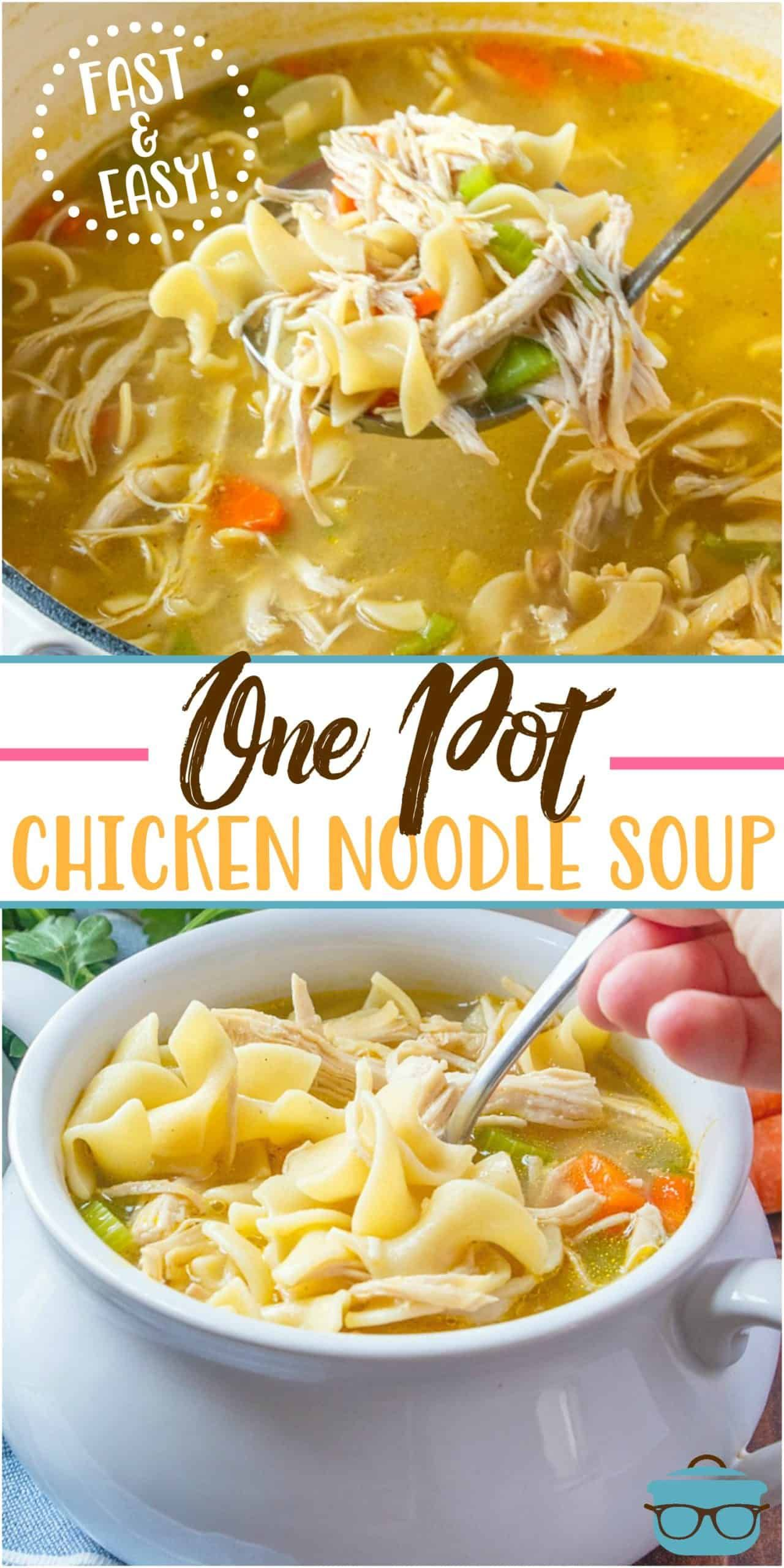 ONE POT CHICKEN NOODLE SOUP (+Video) | The Country Cook