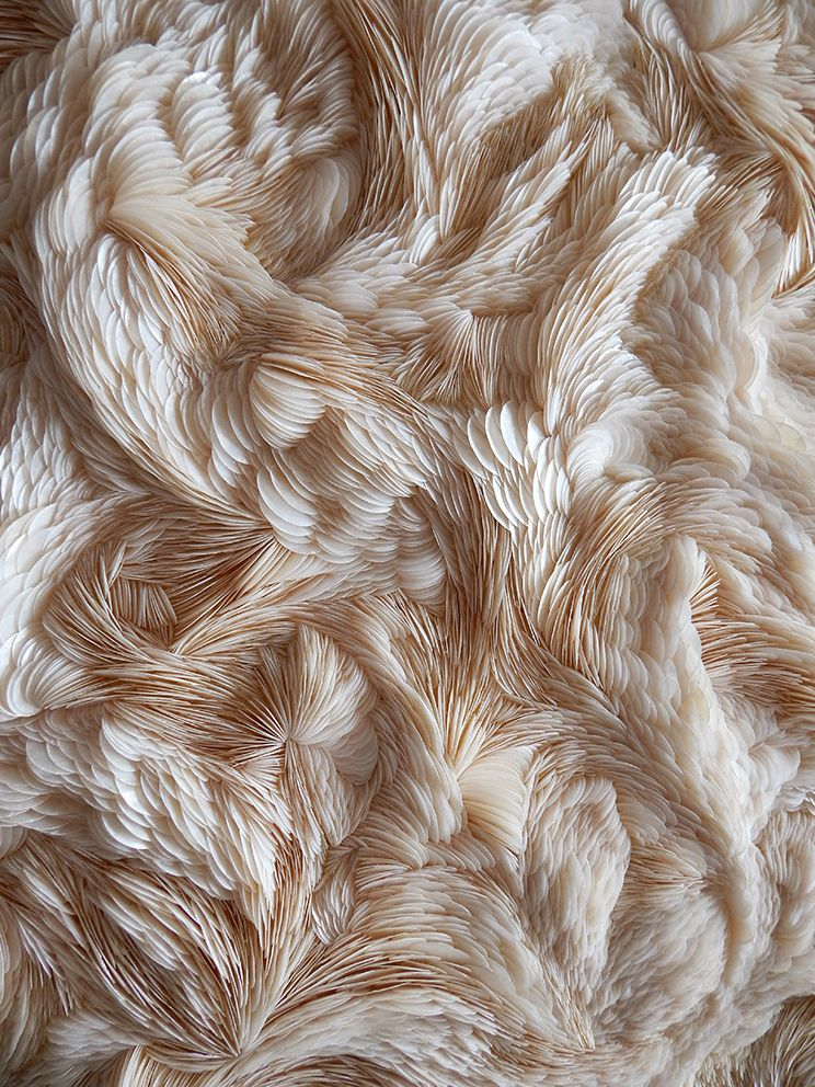 Experimental Textiles Design with intricate feather textures; fabric manipulation; textile art // Rowan Mersh #texturespatterns