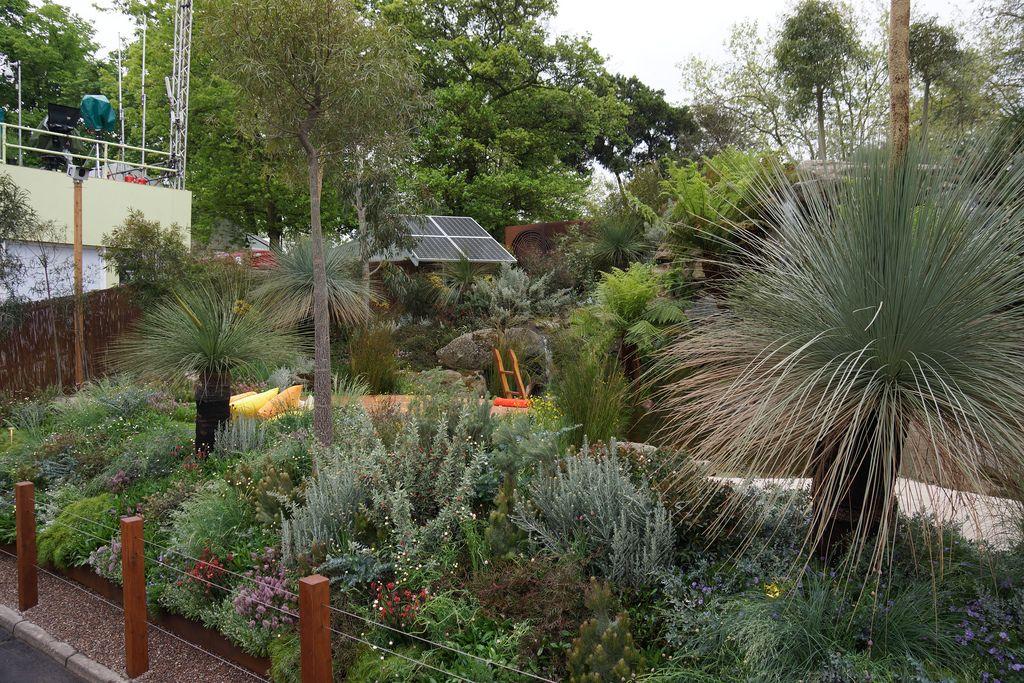 8758822177 0e2be97895 1 024 683 pixels australian for Native garden designs australia
