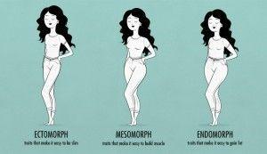 female body shapes & somatotypes—female ectomorph, endomorph, mesomorph   Skinny Fat Ectomorp…