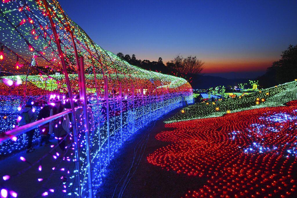 ab48be15e09ec5813f1d9fb5e71505d6 - Festival Of Lights Moody Gardens December 11