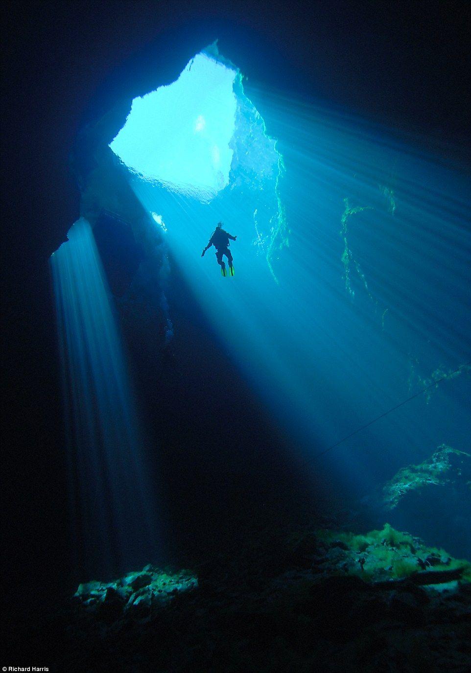 Divers Navigate Through An Elusive Cave Hidden Beneath A Paddock Underwater Caves Cave Diving Underwater World