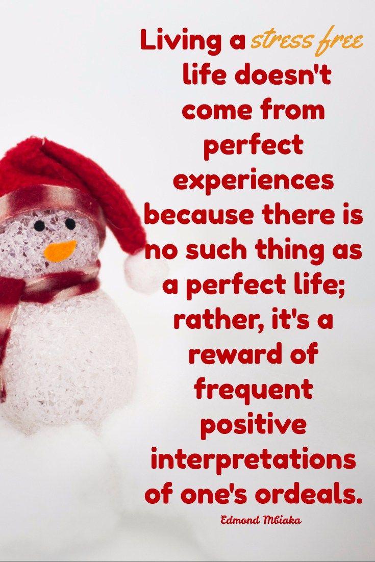 Secrets to a Stress Free Christmas Season Positive