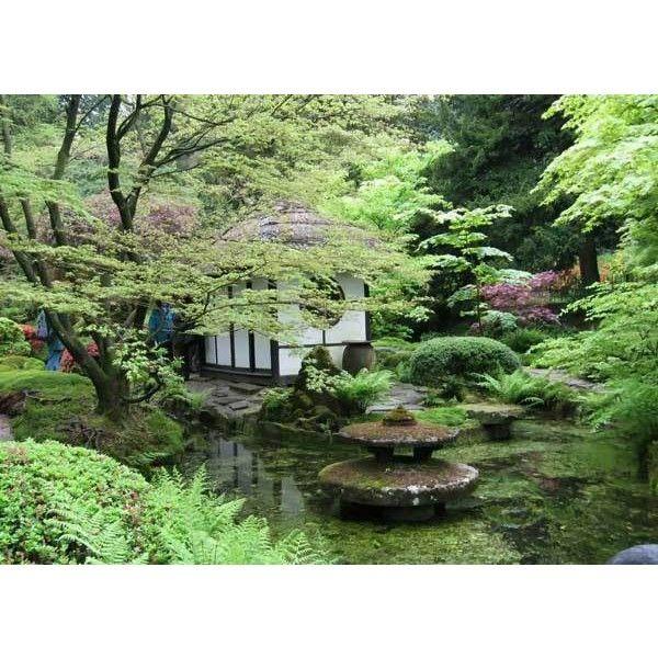Astonishing Japanese Zen Garden ❤ Liked On Polyvore