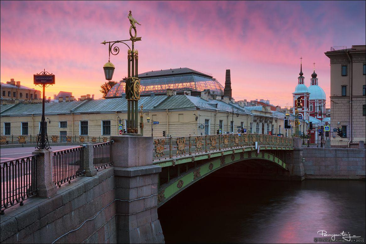 фото пантелеймоновского моста на фонтанке парнокопытное животное