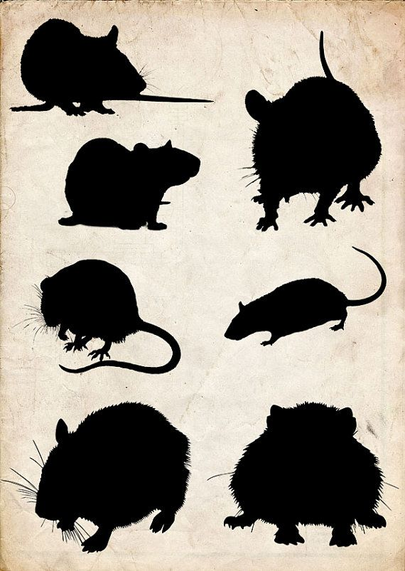 Mouse Silhouette Clip Art 7 Png Clipart Instant Download Etsy Silhouette Clip Art Rat Silhouette Mouse Silhouette