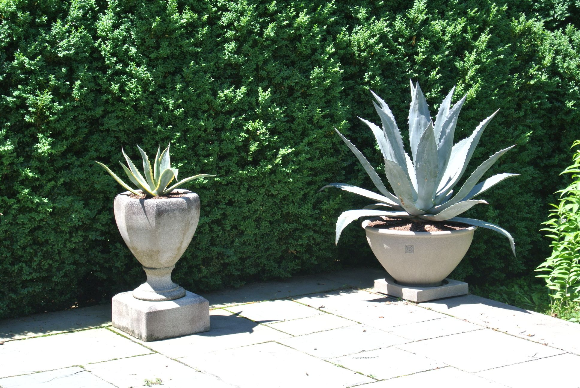 Garden pots and planters from pennoyer newman gardening flowers garden pots and planters from pennoyer newman workwithnaturefo