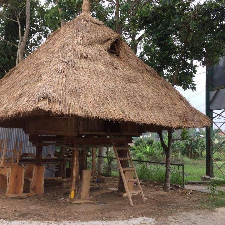 Ifugao native house ifugao dwelling pinterest house for Native bungalow house