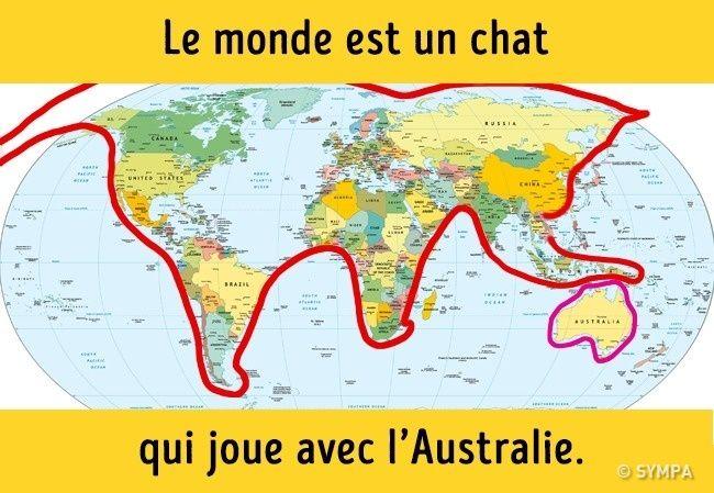 carte du monde chat David McDonie (davidmcdonie) on Pinterest