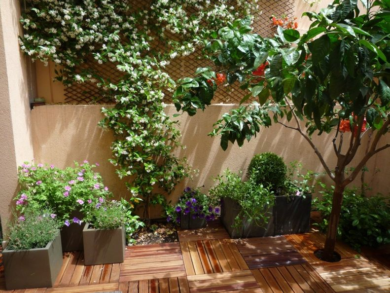 One of my own garden designs a tiny courtyard garden for Design my own garden