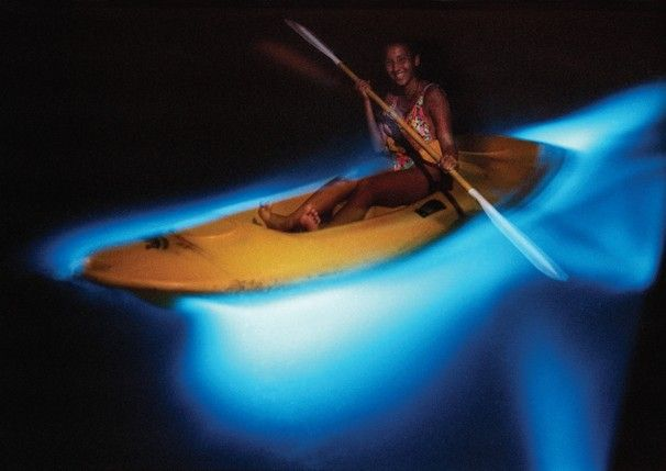 This lady is kayaking on bioluminescent (glows in the dark) waters in Puerto Rico...isn't this incredible?