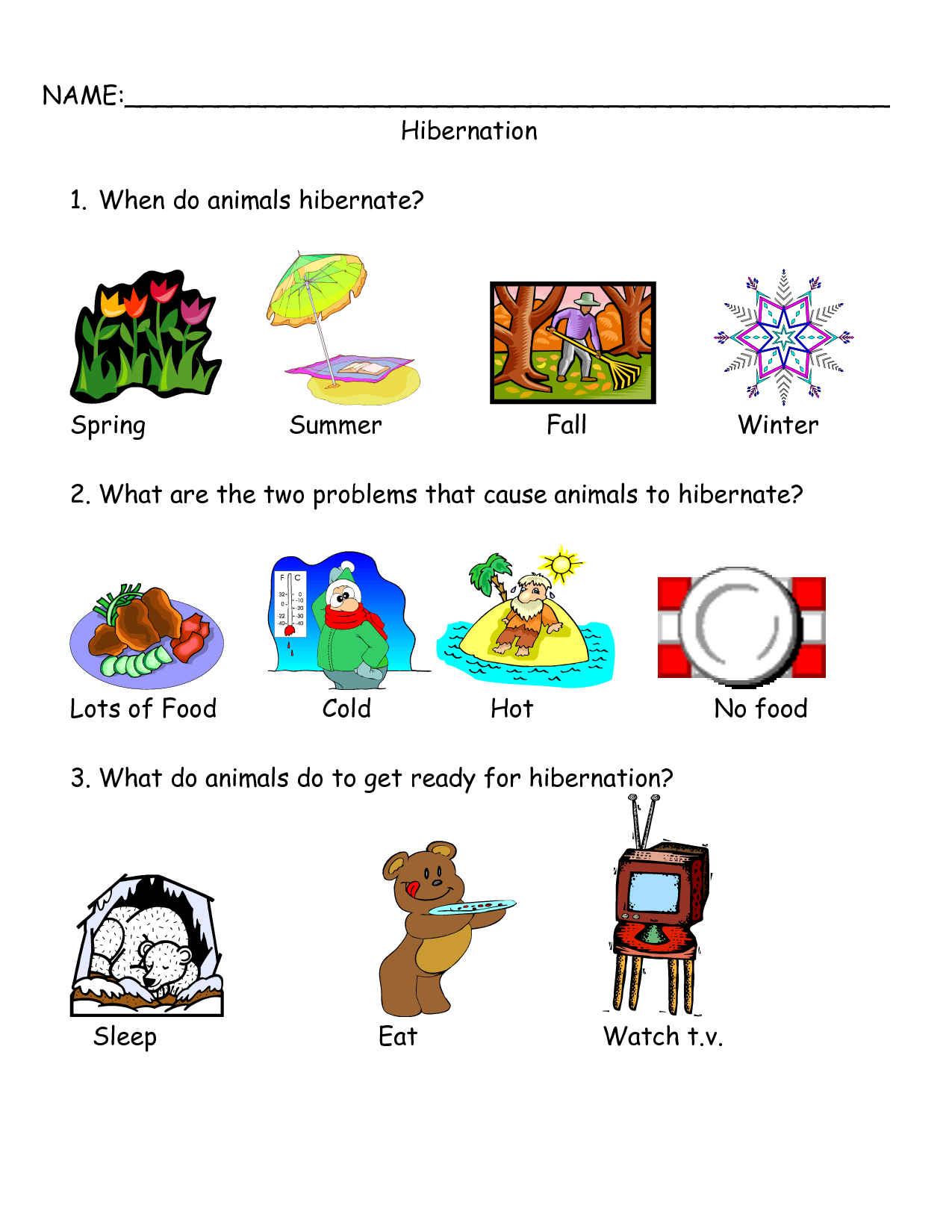Worksheets On Bear Hibernation