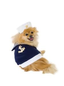 Sailor Dog Costume costumes costumes dog costumes dog in halloween costumes  sc 1 st  Pinterest & Hey there Sailor. | Cute Animals | Pinterest | Pet costumes Dog ...