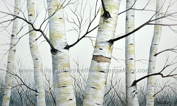 Large A3 Size Birch Trees In The Forest By Shellhammerstudio