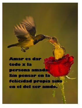 amar es dar
