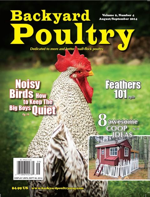 Incroyable Backyard Poultry Magazine