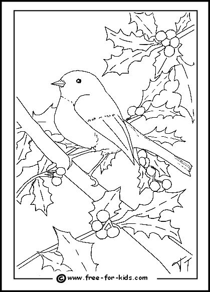 Christmas Tree With Birds On It Coloring Pages Robin Colouring