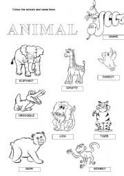 english worksheet wild animals projekty do wypr bowania worksheets animals vocabulary. Black Bedroom Furniture Sets. Home Design Ideas
