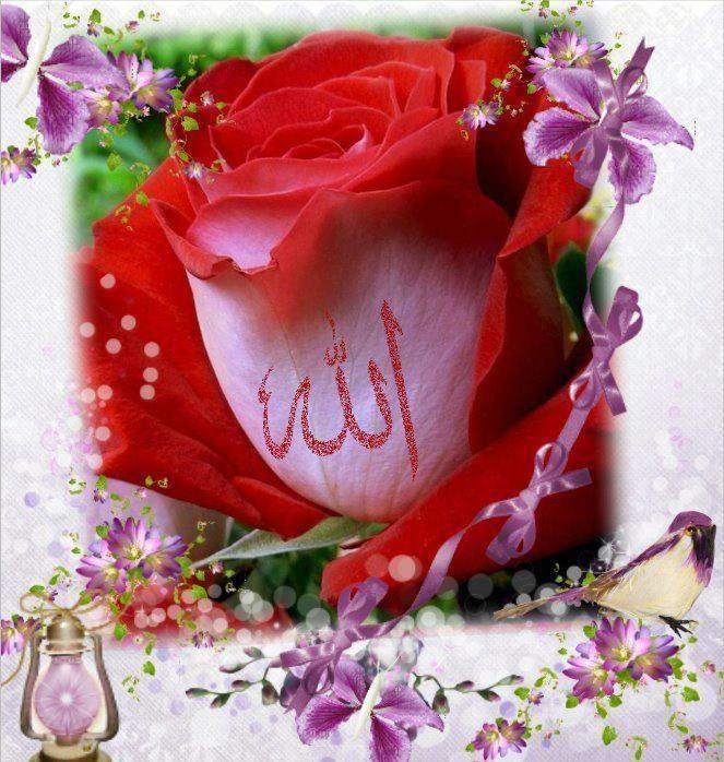 Allah Love Buscar Con Google Allah Love Allah Floral Wreath