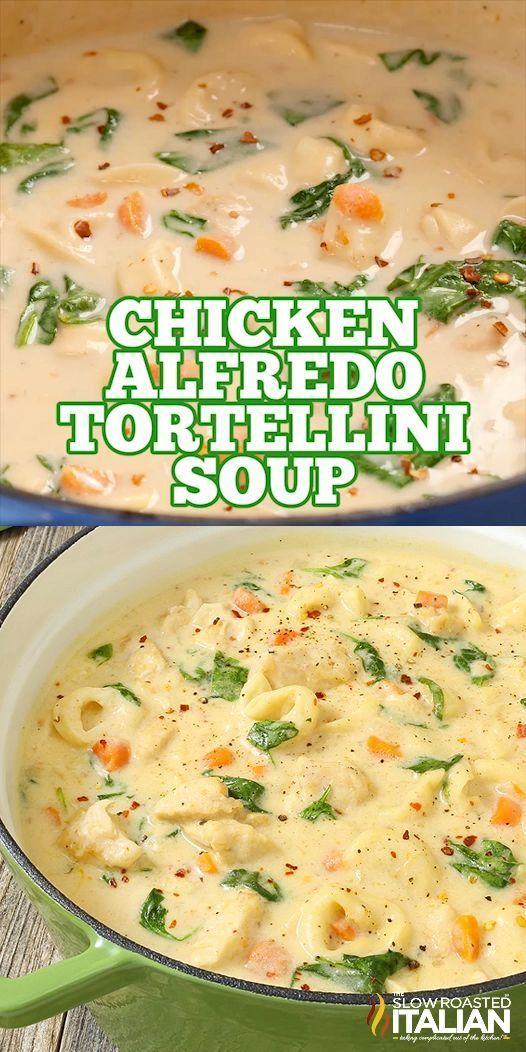 Chicken Alfredo Tortellini Soup - Pasta - Suppen Idees - #Alfredo #Chicken #Idees #Pasta #Soup #Supp...