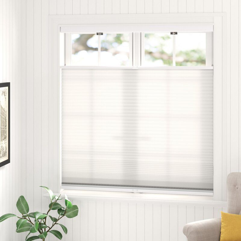 Cordless Top Down Bottom Up Semi Sheer Cellular Shade Cellular Shades Shades Blinds Window Shades