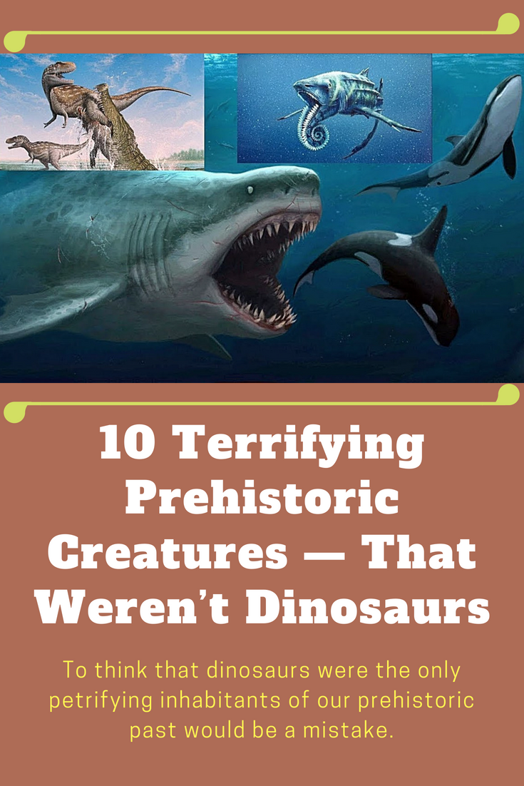 10 Terrifying Prehistoric Creatures — That Weren't Dinosaurs #prehistoriccreatures 10 Terrifying Prehistoric Creatures — That Weren't Dinosaurs  #terrifying #Prehistoric #Creatures #Dinosaurs #animals #weird #interesting #amazing #undersea #prehistoriccreatures 10 Terrifying Prehistoric Creatures — That Weren't Dinosaurs #prehistoriccreatures 10 Terrifying Prehistoric Creatures — That Weren't Dinosaurs  #terrifying #Prehistoric #Creatures #Dinosaurs #animals #weird #interesting # #prehistoriccreatures