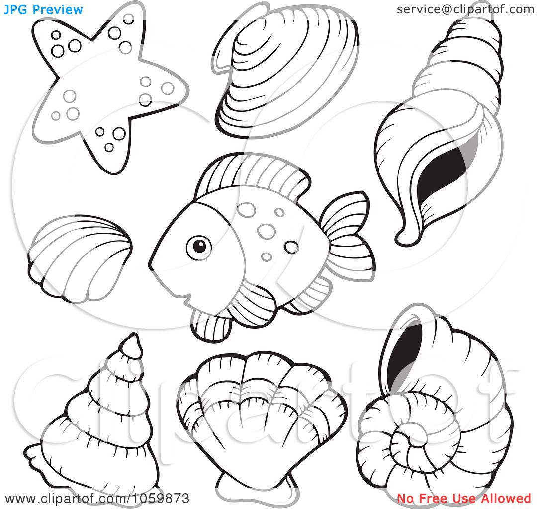 Royalty Free Vector Clip Art Illustration Of A Digital Collage Coloring Page Outlines Shells And Fish By Visekart