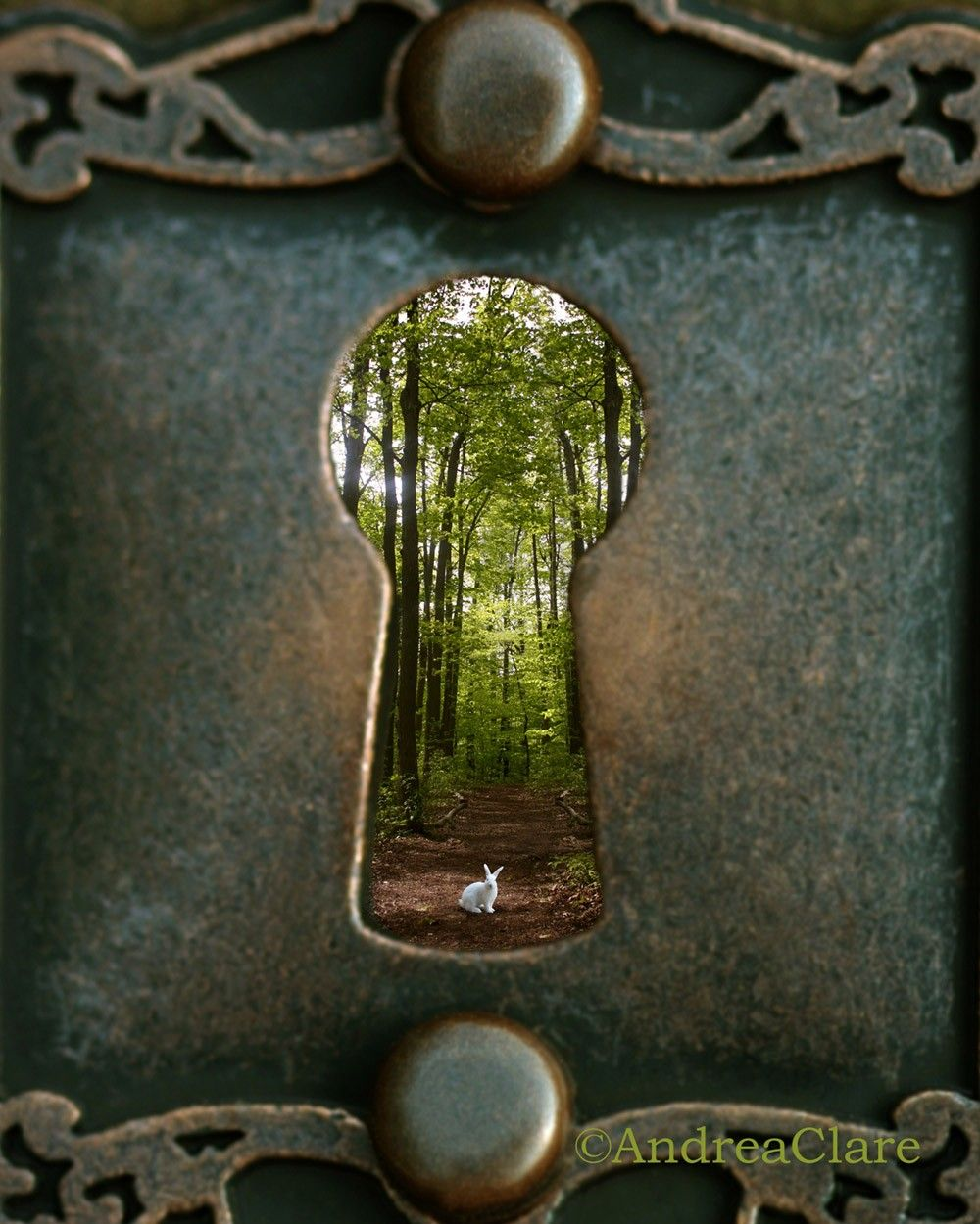 Alice in wonderland white rabbit photograph fine art photography, Andrea Clare, Key Hole