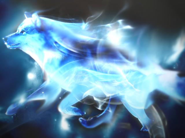 What Is Your Spirit Animal Harry Potter Patronus Wolf Patronus Patronus