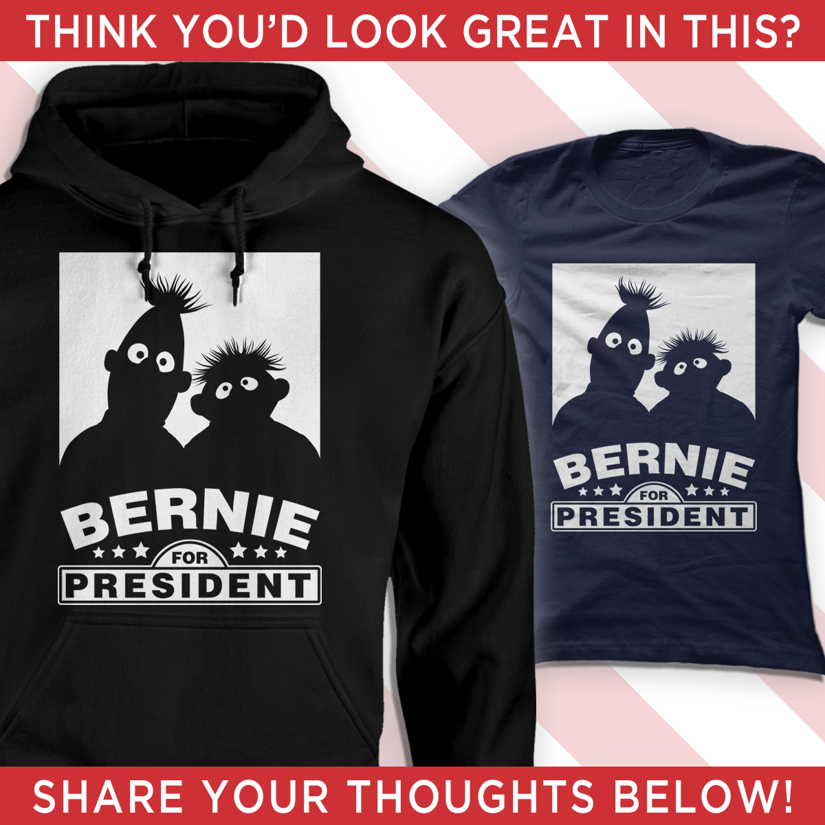 Exclusively For Bernie Supporters