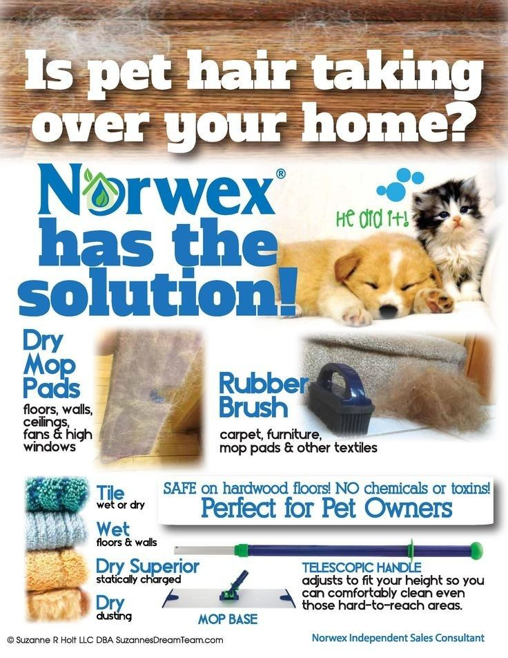 Cleaning up after you pet www.juliehore.norwex.co.uk