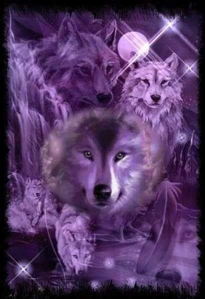 More Purple Wolves Purple Fantasy Let Your