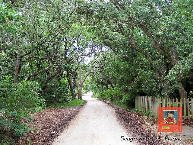 Old Seagrove Beach Road