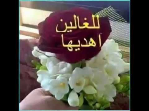 صباح الورد Youtube Good Evening Greetings Good Morning Roses Good Evening Messages